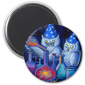 The Owl Chemists Magnet