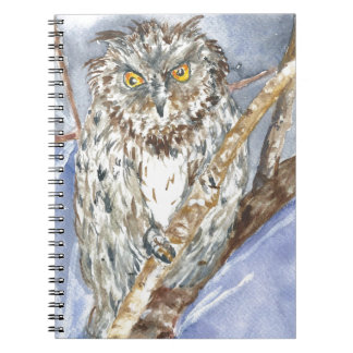 The owl note books