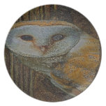 THE OWL PLATE