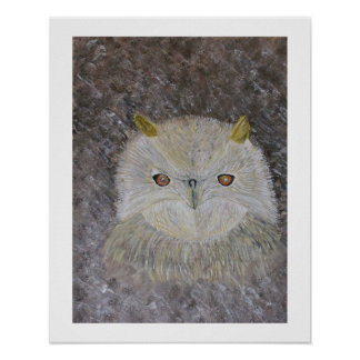 The Owls Eyes Poster
