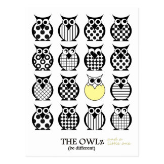 The Owlz and a little one Postcard