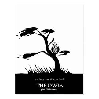 The Owlz - owlin in the wind Postcard