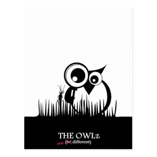 The Owlz - see different Postcard