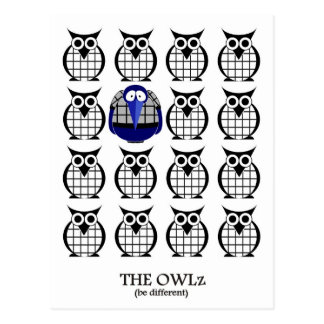 The Owlz with Raven Postcard