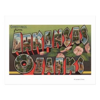 The Ozarks, Arkansas - Large Letter Scenes Post Card