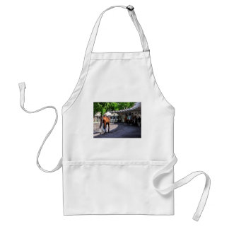 The Paddock at Belmont Park Adult Apron