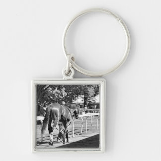The Paddock at Belmont Park Key Chains