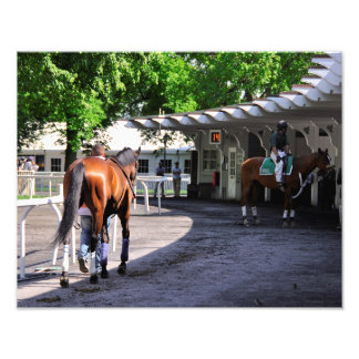 The Paddock at Belmont Park Photograph