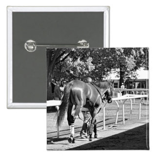 The Paddock at Belmont Park Pins