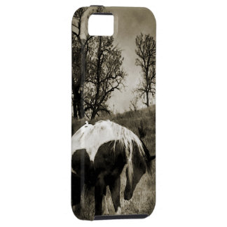 The Paint Horse i-Phone 5 Case iPhone 5 Covers