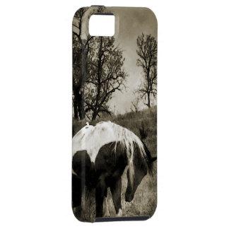 The Paint Horse i-Phone 5 Case