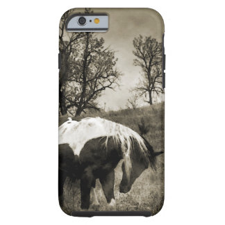 The Paint Horse i-Phone 5 Case
