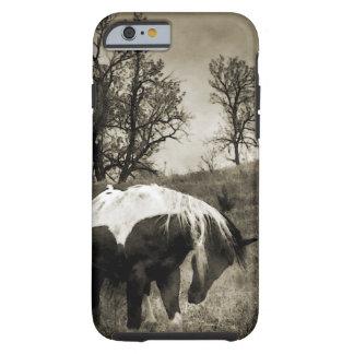 The Paint Horse i-Phone 5 Case Tough iPhone 6 Case