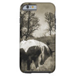 The Paint Horse i-Phone 5 Case iPhone 6 Case