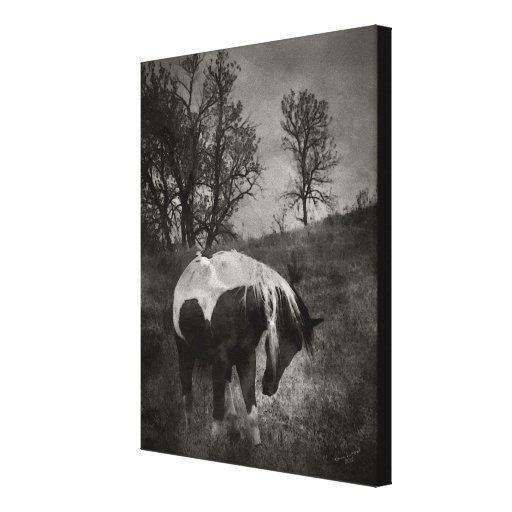 The Paint in Sepia Stretched Canvas Print