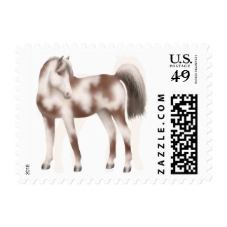 The Paint Stallion Horse Postage