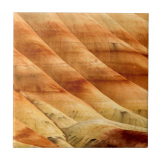 The Painted Hills In The John Day Fossil Beds 2 Tile
