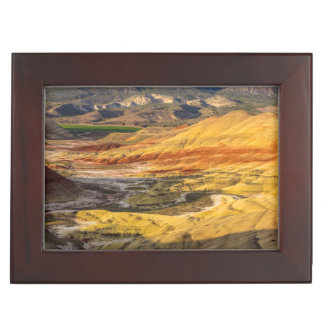 The Painted Hills In The John Day Fossil Beds 3 Memory Box