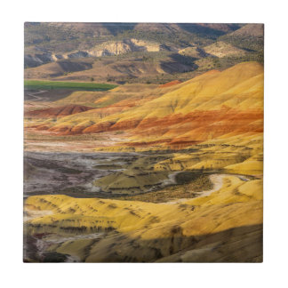 The Painted Hills In The John Day Fossil Beds 3 Tile