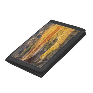 The Painted Hills In The John Day Fossil Beds 3 Trifold Wallet