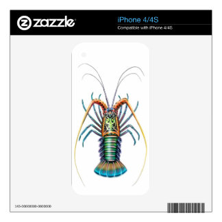 The Painted Spiny Lobster Zazzle Skin iPhone 4 Decals