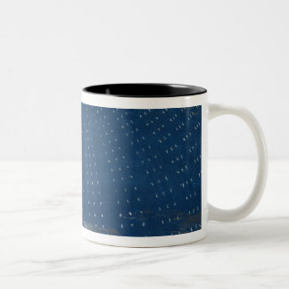 The Palace of the Queen of the Night Two-Tone Coffee Mug