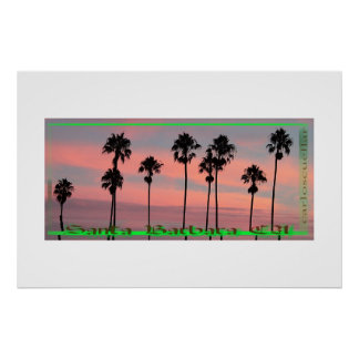 the palm trees poster