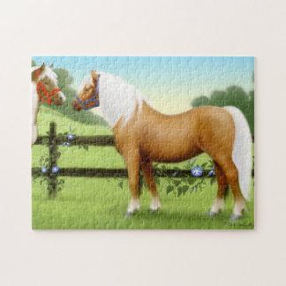 The Palomino Pony Puzzle