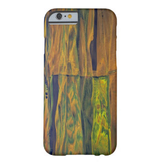 The Palouse from Steptoe Butte, Colfax, Barely There iPhone 6 Case