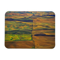 The Palouse from Steptoe Butte, Colfax, Magnet