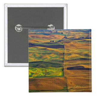 The Palouse from Steptoe Butte, Colfax, Pinback Button