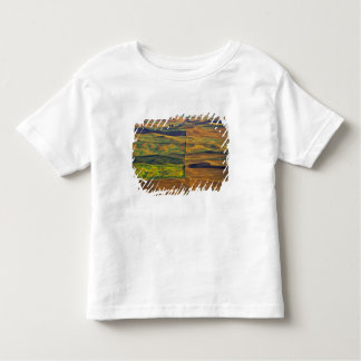 The Palouse from Steptoe Butte, Colfax, Shirt