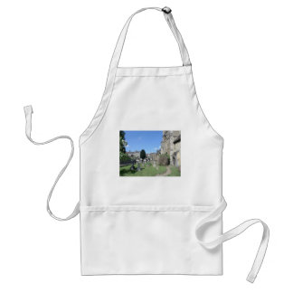 The Parish Church of St John the Baptist at Frome Adult Apron