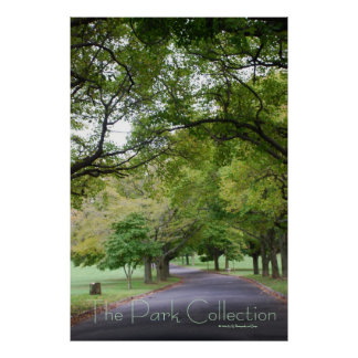 The Park Collection - Winding Path Poster