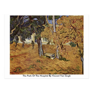The Park Of The Hospital By Vincent Van Gogh Postcard