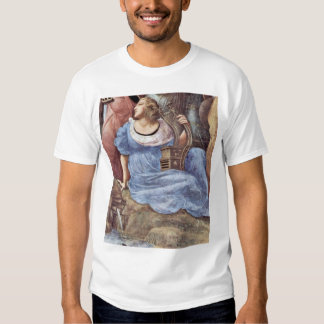 The Parnassus  By Raffael (Best Quality) T-shirts
