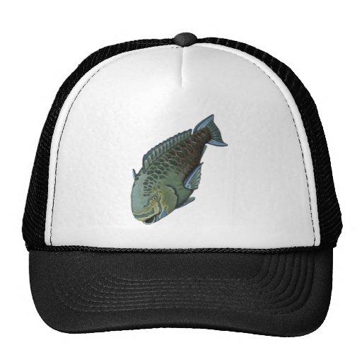 THE PARROT FISH TRUCKER HAT