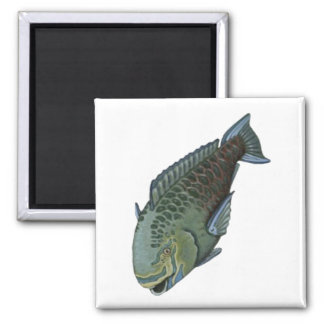 THE PARROT FISH MAGNETS