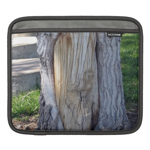 The part of the tree without bark sleeve for iPads