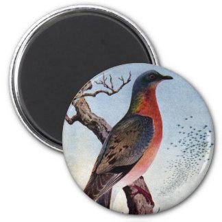 The Passenger Pigeon 2 Inch Round Magnet