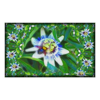 The Passion of the Bumble Bee Large Poster