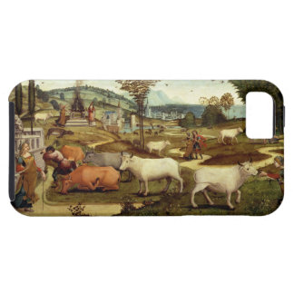 The Passions of Pasiphae, wife of King Minos of Cr iPhone SE/5/5s Case