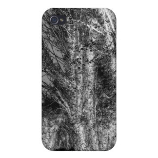 The path Grayscale Iphone4 Case iPhone 4/4S Covers