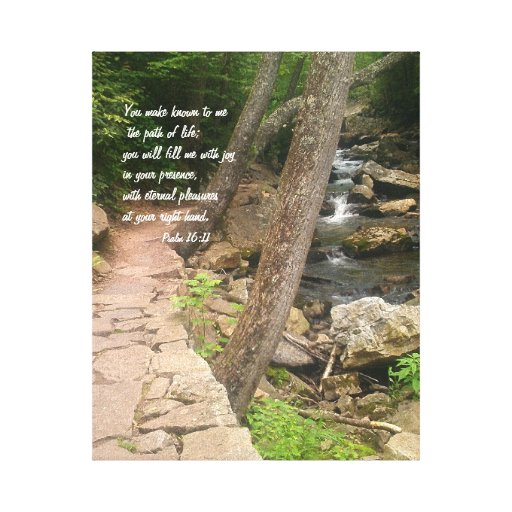 The Path of Life Canvas Stretched Canvas Print