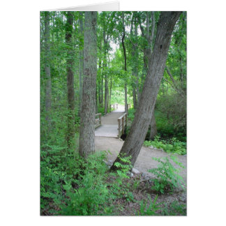 The Path Rarely Traveled Greeting Card