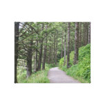 The Path Stretched Canvas Prints