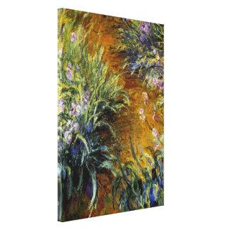 The Path Through the Irises Canvas Print