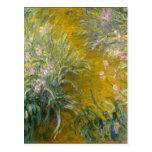 The Path through the Irises - Claude Monet Postcard