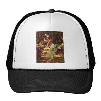 The Path - Wheaten Terrier Trucker Hat