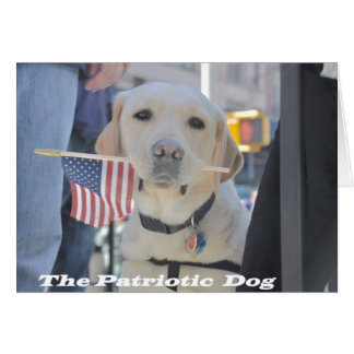 The Patriotic Dog Card